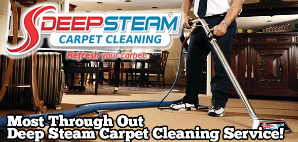 Rated Best Carpet Cleaning Service in Tampa